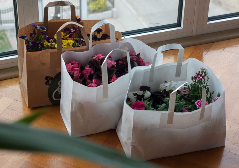 саксија flowerbags